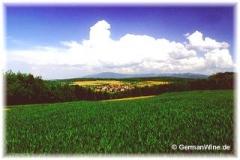 Wintersweiler Blauen
