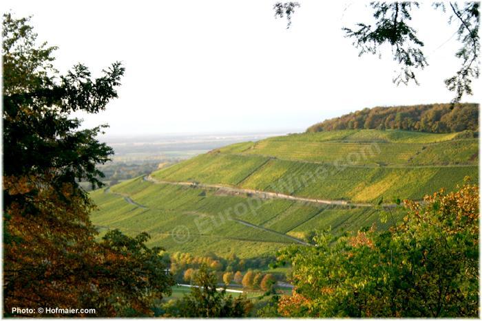 Badenweiler Römerberg